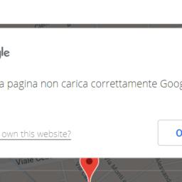 Google-Maps-Platform